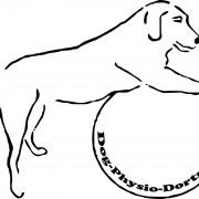 Kerstin Dratwa - Dog Physio Dortmund
