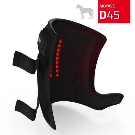 d45-back