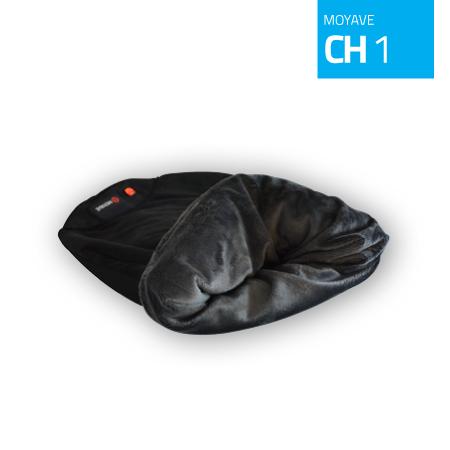 ch1-1